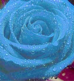 Голубой 10мл Краситель пищевой жидкий - фото 6066