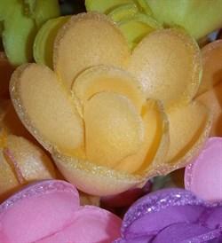 Роза вафельная - фото 6326