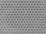 Пчелиные соты текстурный лист 100*145мм