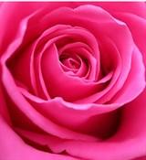 Розовый 10мл Краситель пищевой жидкий