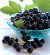 Чёрная смородина ароматизатор пищевой 100мл
