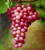 Виноградной косточки масло (рафинированное) 1л