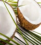 Кокосовое масло (нерафинированное) 100г