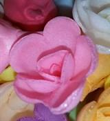 Роза вафельная