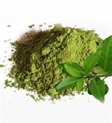 Зелёный чай, polyphenols 40%, экстракт 5г