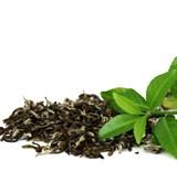 Зелёный чай отдушка косметическая 10мл