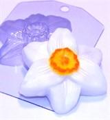 Нарцисс форма пластиковая