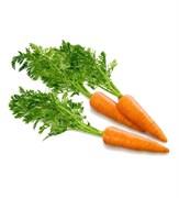 Моркови овощная пудра 5г